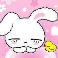 兔子妈安妮